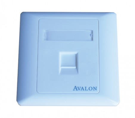 Single Port RJ45 Face Plate